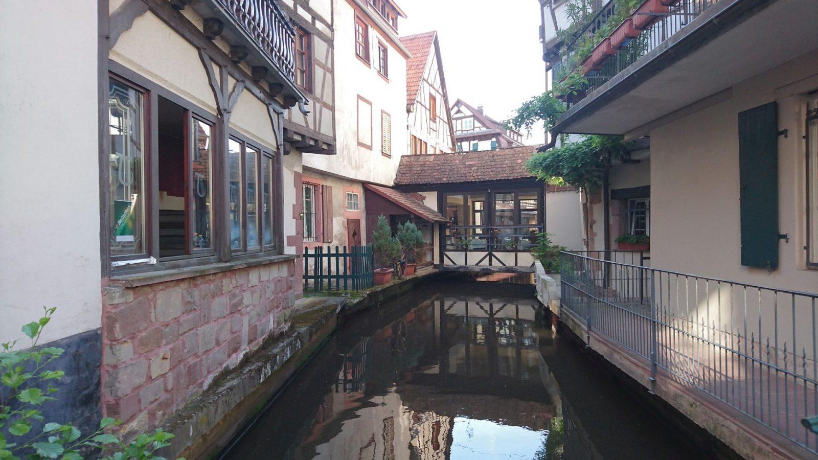Die Lauter fließt durch Wissembourg