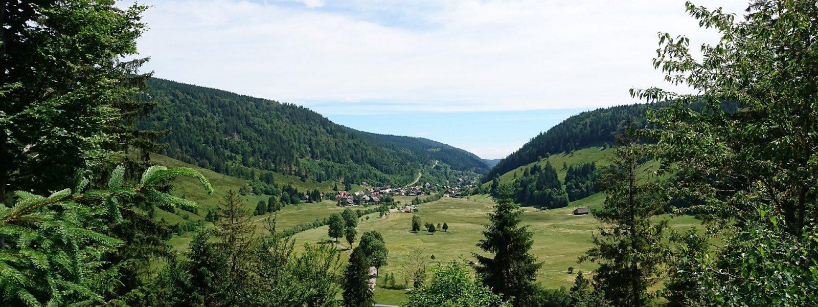Benzingeruch statt Schwarzwaldluft