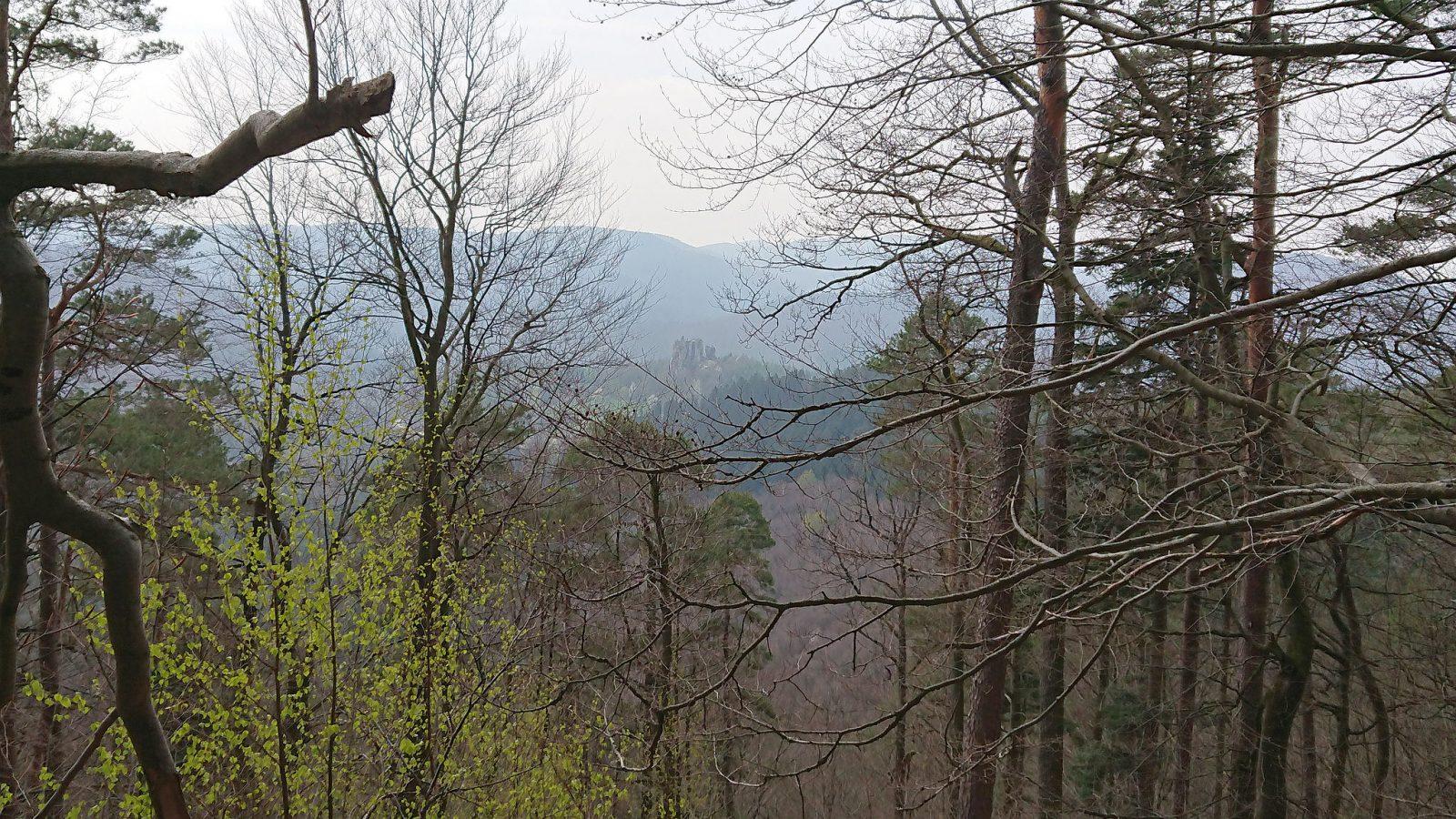 Nochmals die Burgruine Fleckenstein im Hintergrund.